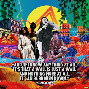 """Collaged image of Assata Shakur surrounded by colorful sand dunes, flowers, and vibrant buildings. Caption reads """"And, if I know anything at all, it's that a wall is just a wall and nothing more at all. It can be broken down."""""""